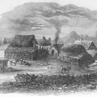 <em>Icelandic houses</em>