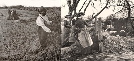 Farm workers in rural England, 1885