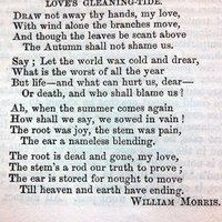 Love's Gleaning Tide