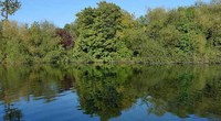 Thames River at Runnymede